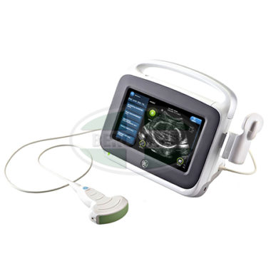 GE Ultrasound Vscan Access